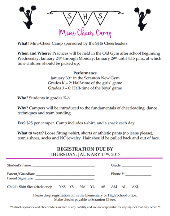 Mini Cheer Camp Information
